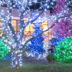 Wholesale Christmas Light